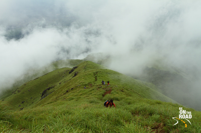 Green Chembra Peak Trek