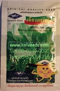 เมล็ดพันธุ์ผักกาดเขียวกวางตุ้ง ตราเรือบิน