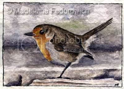 Little Robin Bird ACEO