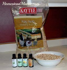 1000  ideas about Mice Repellent on Pinterest   Getting rid of mice, Peppermint oil for mice and