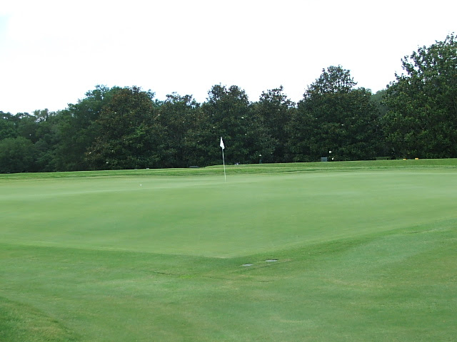 yh5th green