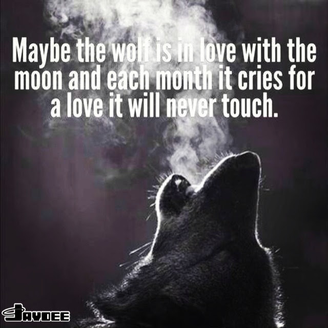 Quotes About Howl At The Moon 20 Quotes