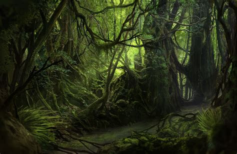 la selva jungle paint  solfour  deviantart