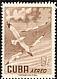 American Herring Gull Larus smithsonianus