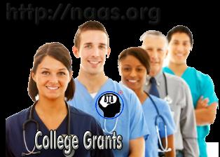 Georgia College Grants