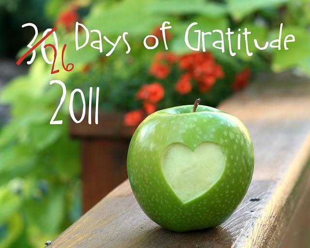 26 Days of Gratitude