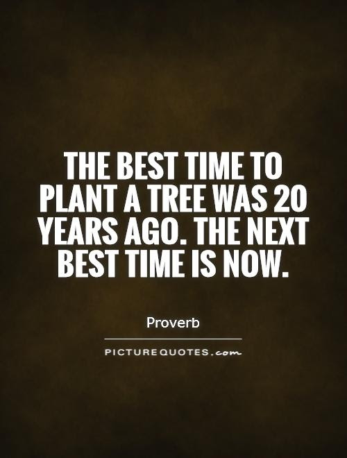 The Best Time To Plant A Tree Was 20 Years Ago The Next Best