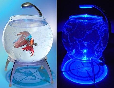 http://www.coolest-gadgets.com/wp-content/uploads/globe-aquarium.jpg