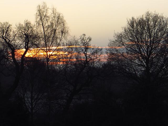 Winter Sunrise at Lower Cohen's Field
