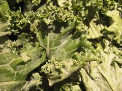 Pieces of kale