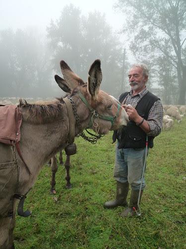 Balbiano, Piero il pastore di Clusone