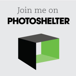 Join us on PhotoShelter