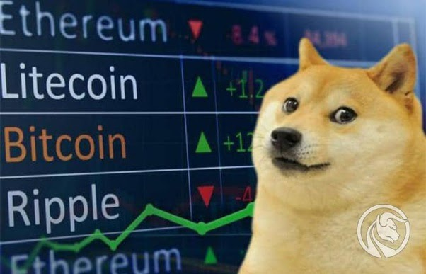 Could Dogecoin Hit $1000 - YUAHO