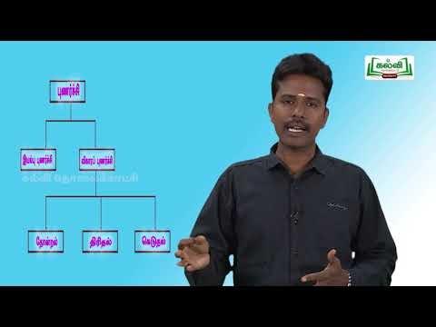 கவிதைப் பேழை Std 9 Tamil புணர்ச்சி Kalvi TV