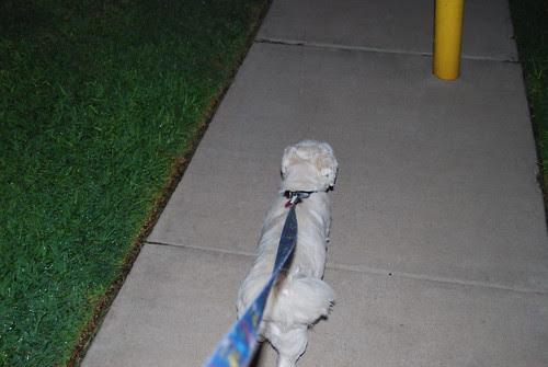 Walkin' Back - 08-20-09