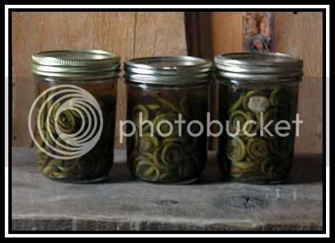 Fiddlehead Pickles