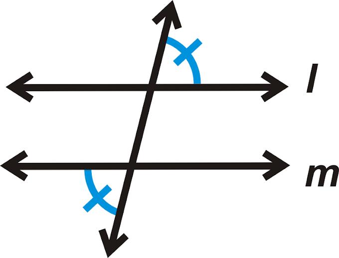 19 Inspirational Alternate Interior Angles Theorem