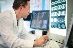 Scientist reviewing xrays on computer
