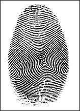 Fingerprint of thumb
