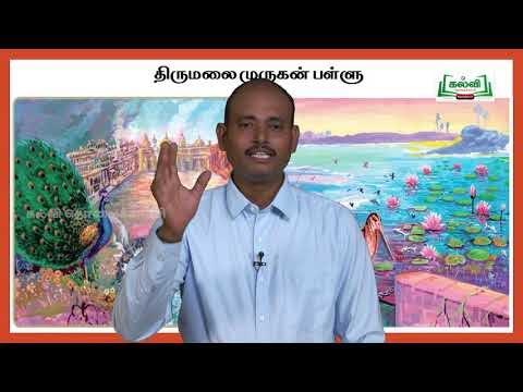 யாமறிந்த மொழிகளிலே Std11  தமிழ் திருமலை முருகன் பள்ளு Kalvi TV