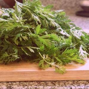 http://www.paulinacocina.net/utilizar-las-hojas-de-zanahoria/746