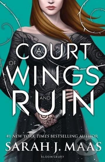 Výsledek obrázku pro court wings ruin