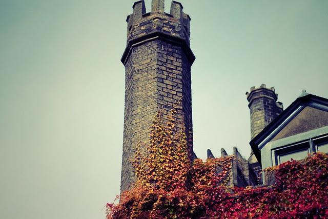 Cambridge_10