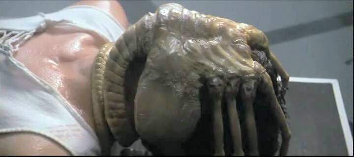 http://images3.wikia.nocookie.net/__cb20080210191235/aliens/images/9/94/Alien_facehugger.jpg