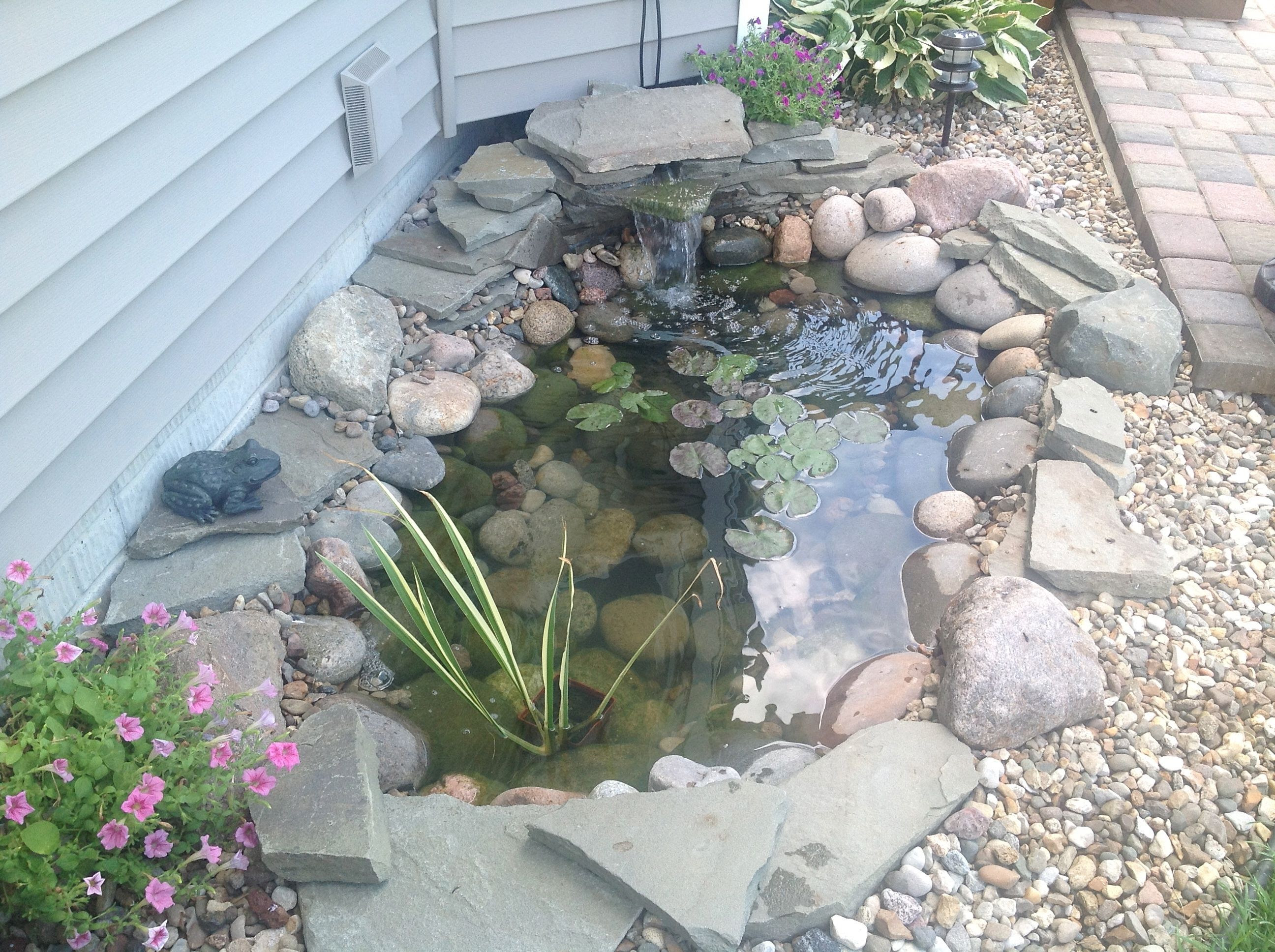 Back Yard Water Feature Idea