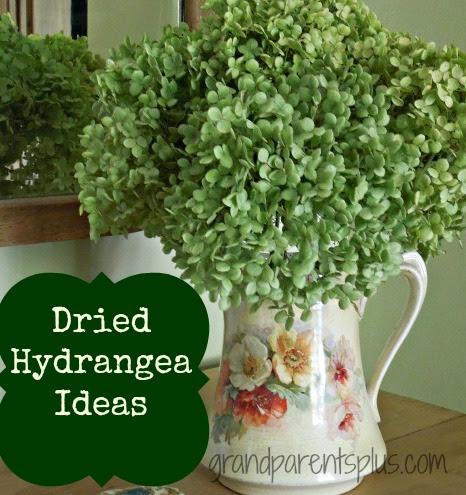 Hydrangea 018pm4 Dried Hydrangea Ideas