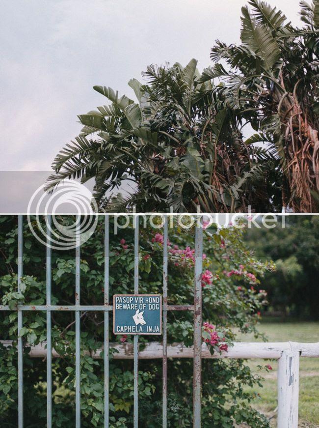http://i892.photobucket.com/albums/ac125/lovemademedoit/welovepictures%20blog/BushWedding_Malelane_053.jpg?t=1355997309