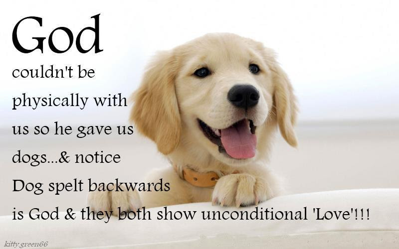 Love Your Dog Quotes. QuotesGram