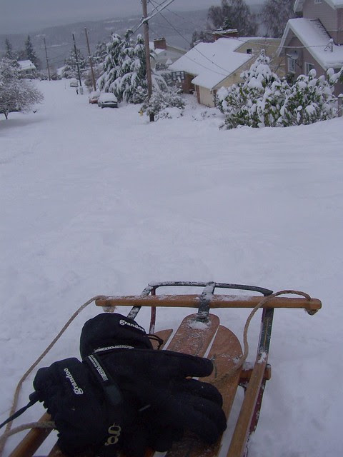 jan 151 On the sled!