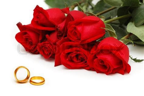 Red roses and rings isolated on the     Stock Photo
