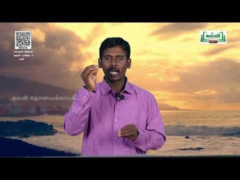 6th Science செல் பருவம் 2 அலகு3 பகுதி2 Kalvi TV