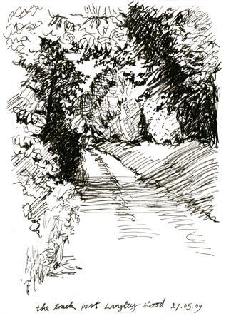 woodlandtrack