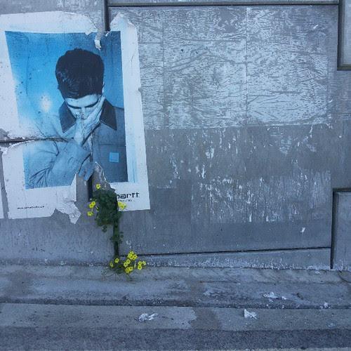 #billboards  #photooftheday #picoftheday #instadaily #nofilter #instadaily #urbanpoetry by Joaquim Lopes