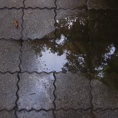 Chinese paving tile types