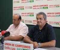 UCCL acusa a la Junta de poner parches a la plaga de conejos y lamenta que no busque soluciones concretas y eficaces