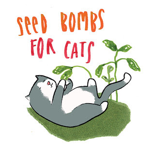 seed bombs for cats