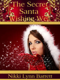 ~ The Secret Santa Wishing Well