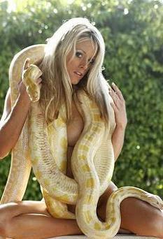 naked Sexy Woman With Burmese Python