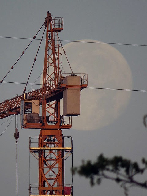 Crane and moon. Photographed by Bernard Eirrol Tugade