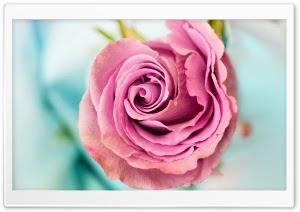 Download 62 Koleksi Wallpaper Cute Hd HD Terbaru