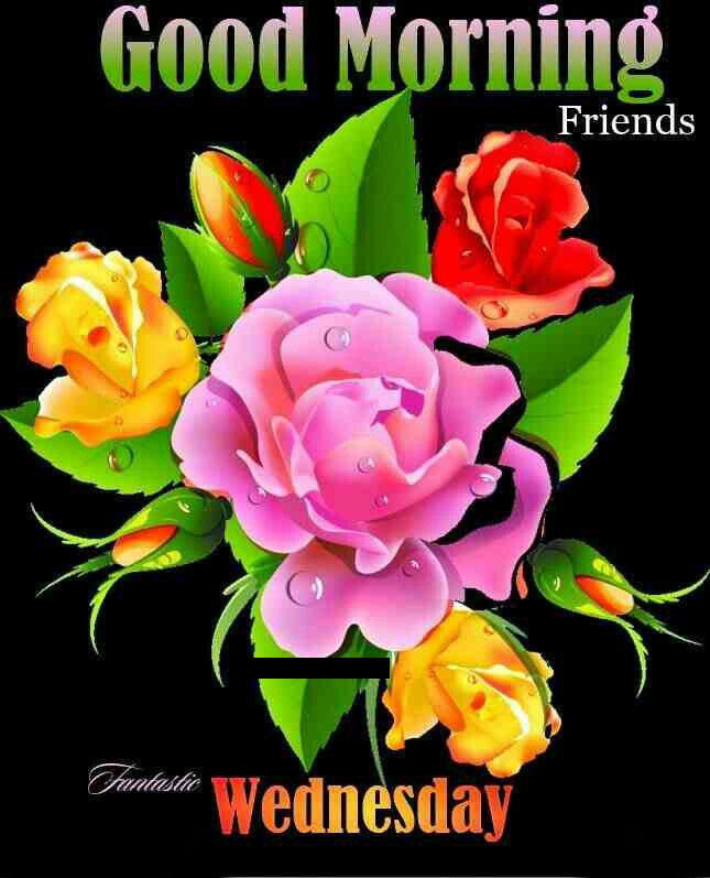 Good Morning Wednesday Flowers Quote Pictures Photos And Images