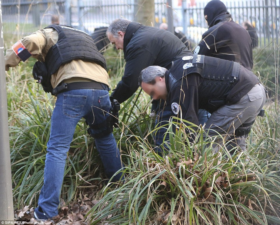 On the ground: Police officers were seen gathering evidence and combing the grassy area near Maelbeek tube station this afternoon