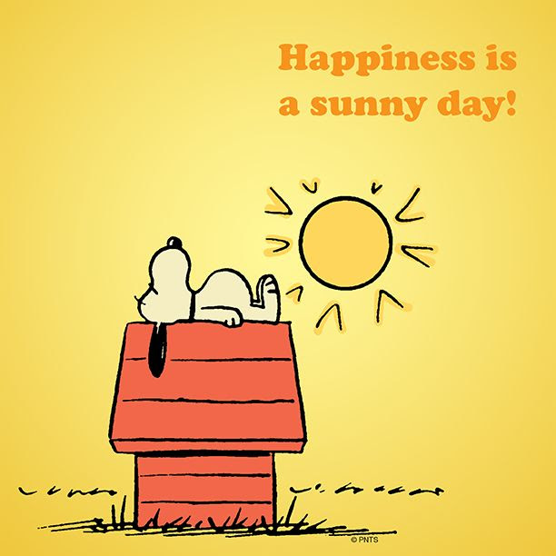 Sunny Day Quotes Happiness Is A Sunny Day