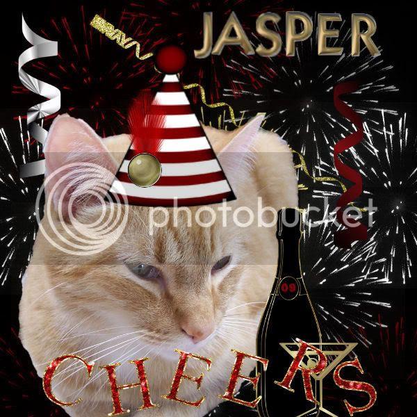 Happy New Year,Tabby Cat