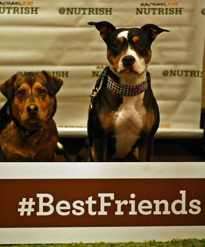 Best Friends picture at the Nutrish booth