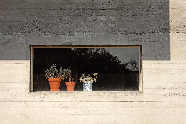 Guestroom window